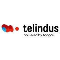 Telindus SA Luxembourg